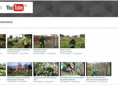 Video filmpjes over rozen snoeien en verzorging