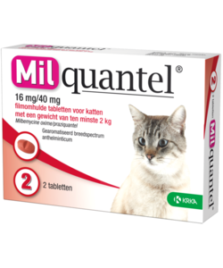 tabletten kat vanaf 2 kg (2 stuks)