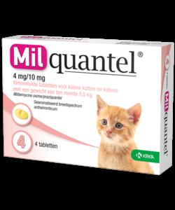 tabletten kat of kitten tot 2 kg (4 stuks)