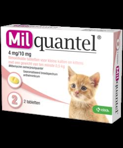tabletten kat of kitten tot 2 kg (2 stuks)