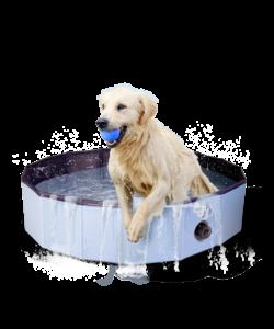 Hondenzwembad 120x30 cm