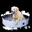 CoolPets Hondenzwembad 120x30 cm