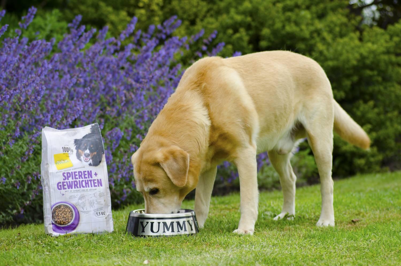 Werking van de kruiden in Ecostyle hondenvoeding