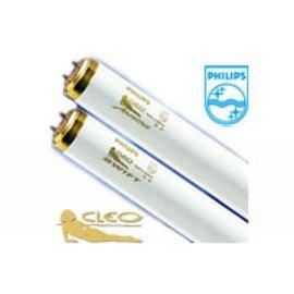 Isolde Cleo Professional 100W-S