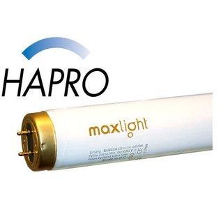 Hapro Maxlight L 100W High Intensive