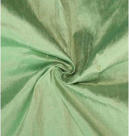 Dupion Silk D30 - pale green