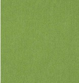 Hiver Terlenka WT90 - vert