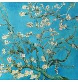 Punta di Roma + 2232 - Van Gogh / Mandelblüte
