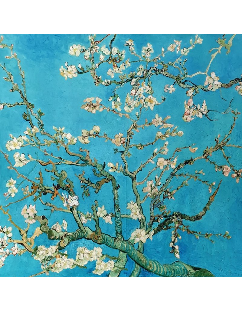 Punta di Roma 2232 - Van Gogh / Fleur d'amandier