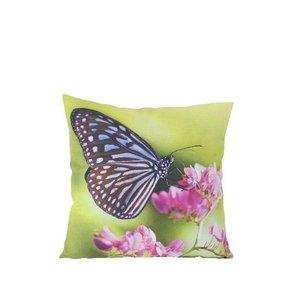 Vlinder Sierkussen Groen