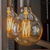 6x Lichtbron LED filament bol ø12,5