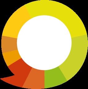 Kiyoh logo