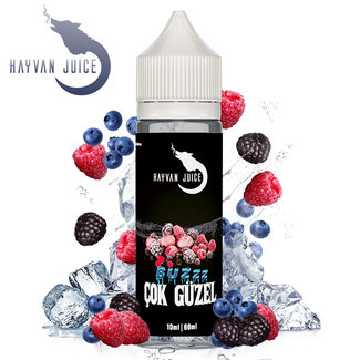 Hayvan Juice Hayvan Juice - Cok Güzel 10ml Aroma