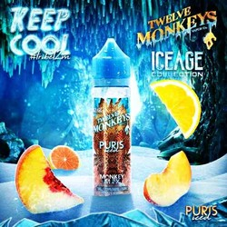 Twelve Monkeys - IceAge - Puris ICED - 50ml Liquid