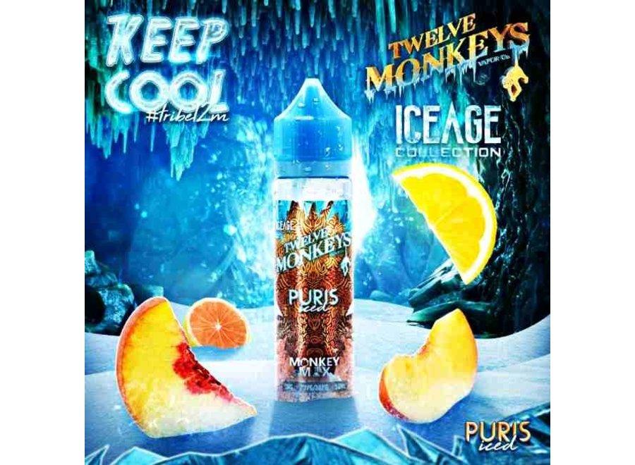 Twelve Monkeys - IceAge - Puris ICED - 50ml Liquid