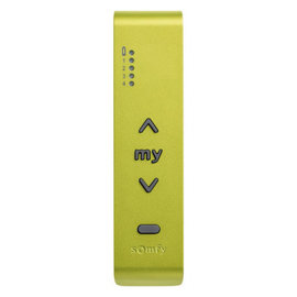 Somfy Situo 5 io Metal Green