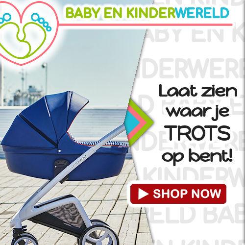 banner 500x500-combi kinderwagen storm-www.baby-en-kinderwereld.nl