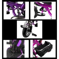 Driewieler Pro600 - zwart