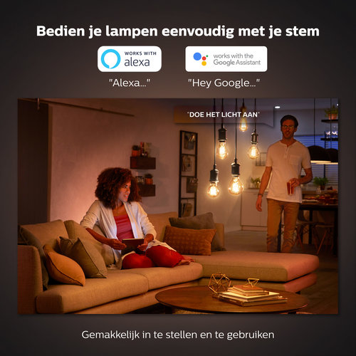 Philips Hue Decoratieve globe - warmwit licht