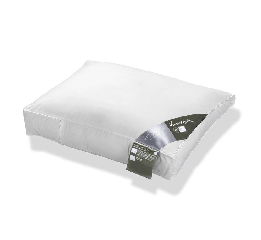 Pillow FEELGOOD firm (BFFG14104)