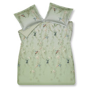 Vandyck Duvet cover CATCHY Light Green 140x220 cm (satin cotton)