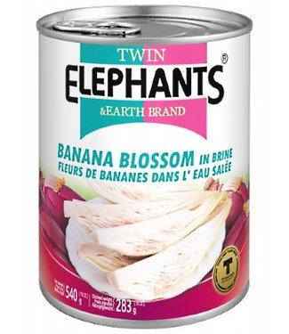 Banana Blossom in Brine 540gr Slices - Twin Elephants
