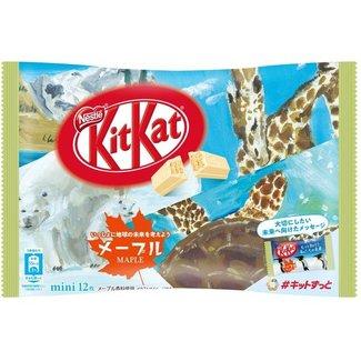 kit kat maple 12 pieces Nestle