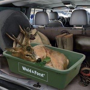 Wald & forst Wildbak