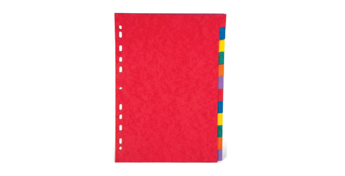 Tabblad A4 karton - 12 tabs