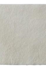Coloplast Biatain® Alginate Ag - per stuk