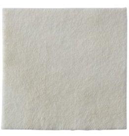 Coloplast Biatain® Alginate Ag - par pièce