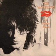 THE WATERBOYS - A PAGAN PLACE (CD)