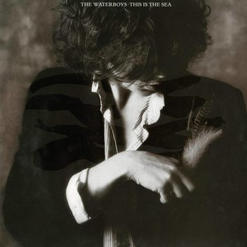 THE WATERBOYS - THIS IS THE SEA (Vinyl LP)