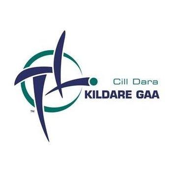 OFFICIAL GAA CREST COUNTY FLAG - KILDARE