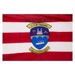 WESTMEATH - GAA FLAG