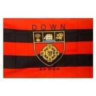 DOWN - GAA FLAG