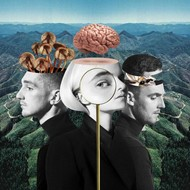 CLEAN BANDIT - WHAT IS LOVE ? (Vinyl LP).