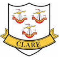 CLARE - COUNTY STICKER