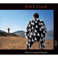 PINK FLOYD - DELICATE SOUND OF THUNDER (CD).