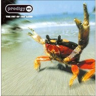 THE PRODIGY - THE FAT OF THE LAND (CD).