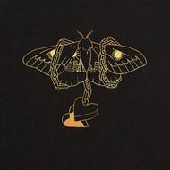 DAVID GRAY - GOLD IN A BRASS AGE (Vinyl LP).