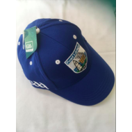 WATERFORD - GAA CAP
