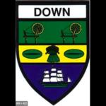 DOWN -  COUNTY STICKER
