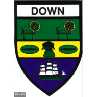 DOWN -  COUNTY STICKER