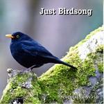 SEAMUS BYRNE - JUST BIRDSONG (CD).. )