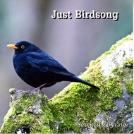 SEAMUS BYRNE - JUST BIRDSONG (CD)...