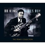 BB KING - BLUES BOY (2 CD Set)