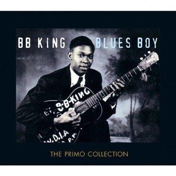 BB KING - BLUES BOY (2 CD Set)