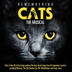 REMEMBERING CATS THE MUSICAL
