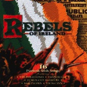 REBELS OF IRELAND - VARIOUS ARTISTS (CD)